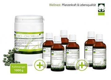 Wellnest Schwermetallausleitung im Entgiftungs-Paket nach Klinghardt -
