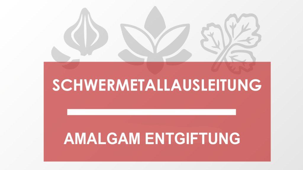 Amalgam Entgiftung