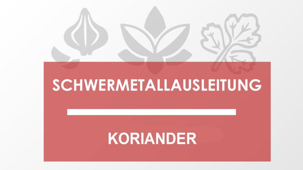 Schwermetallausleitung mit Koriander