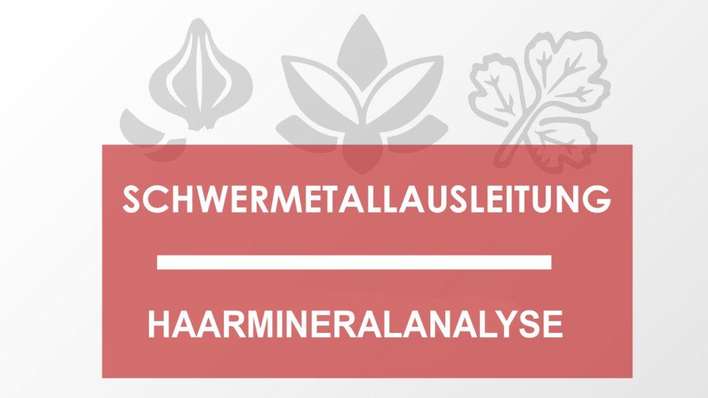 schwermetallausleitung haarmineralanalyse